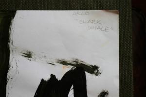 Shark Whale