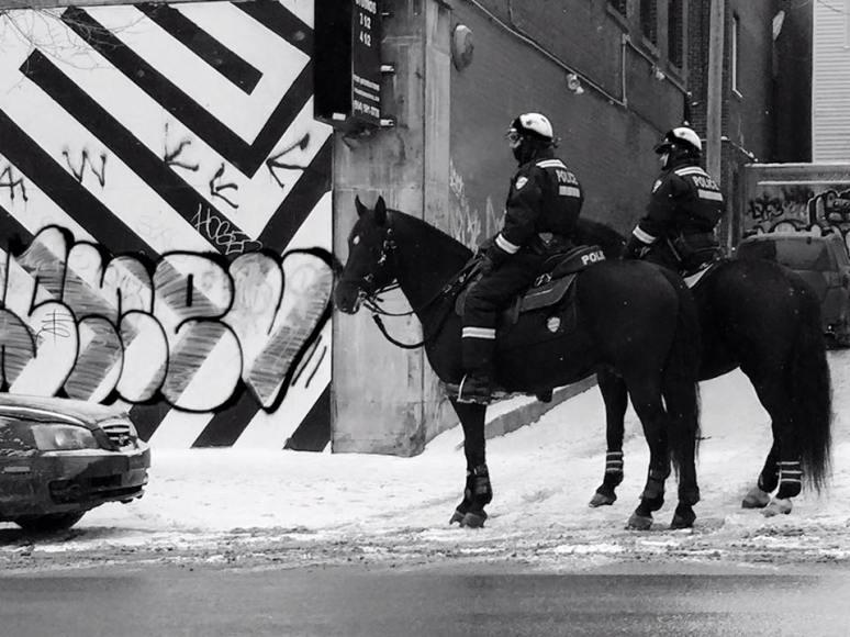 Mounted, 2016